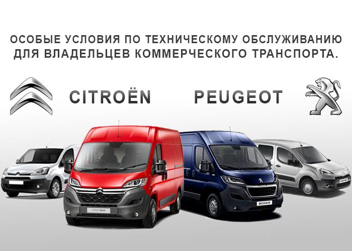 http://aves-k.ru/mkc